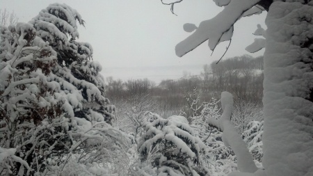 Snow View of Saylorville